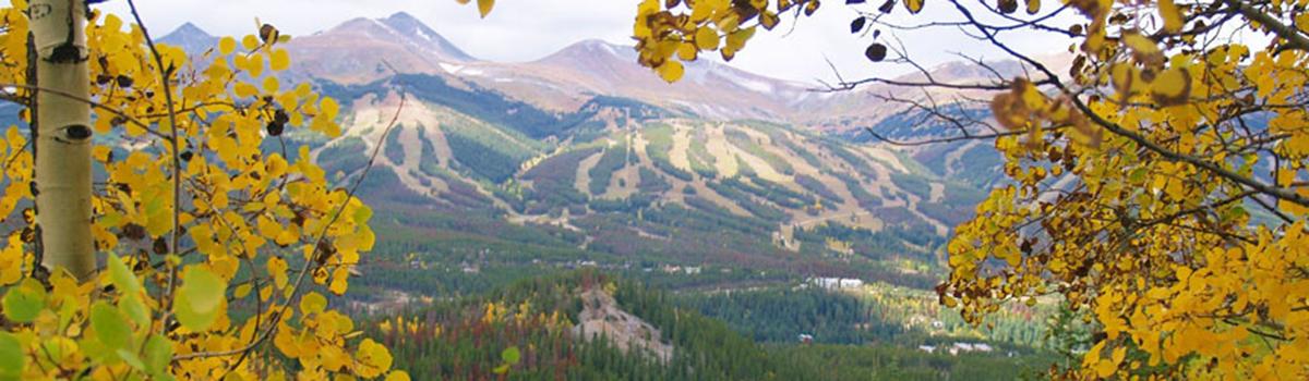 Breck_slider2