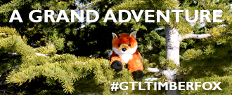 Grand_Adventure_Timber